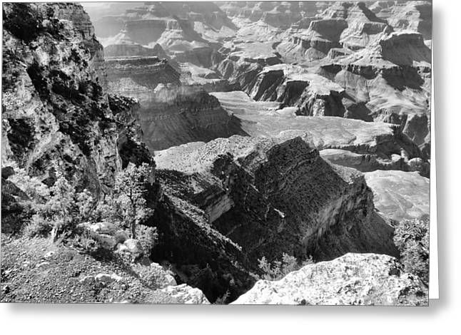 Looking Down On Grand Canyon Greeting Card by Dan Sproul
