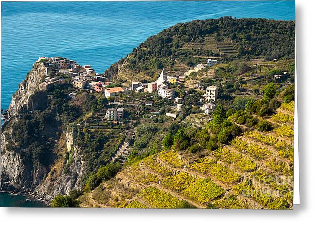 Looking Down Onto Corniglia Greeting Card