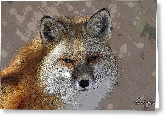Looking Foxy Greeting Card