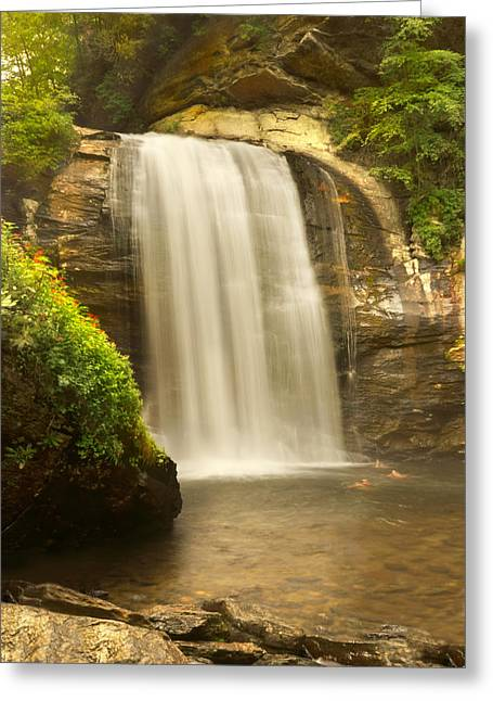 Looking Glass Falls 2 - North Carolina Greeting Card by Mike McGlothlen