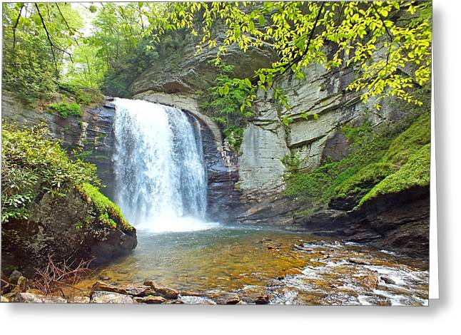 Looking Glass Waterfall In The Spring 2 Greeting Card