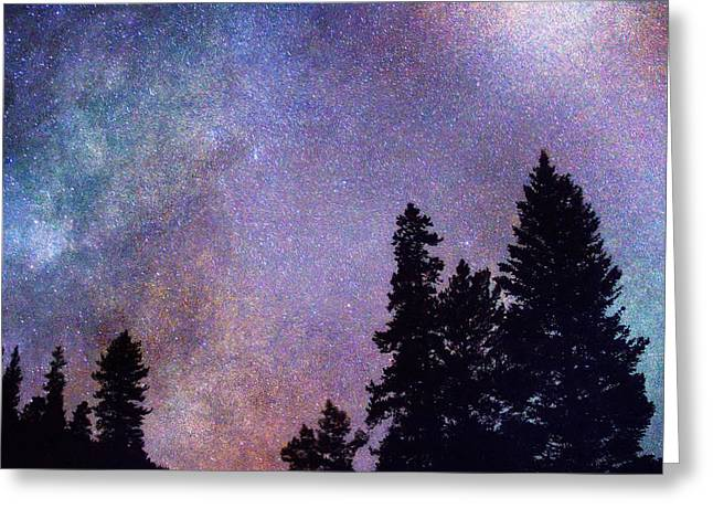 Looking Into The Heavens Greeting Card by James BO  Insogna
