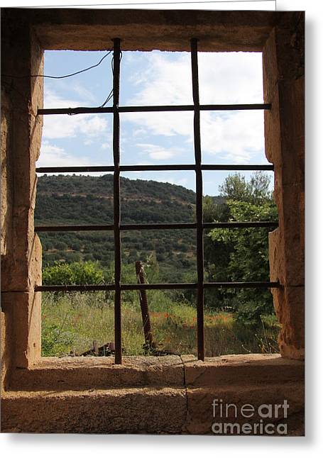 Looking Out  Greeting Card by Diane Greco-Lesser