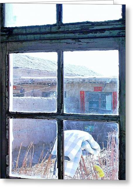 Greeting Card featuring the photograph Looking Out The Kitchen Door In February by Ethna Gillespie