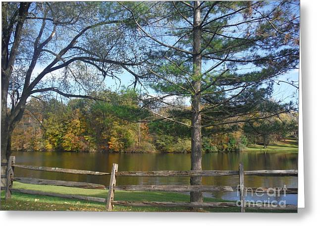Looking Over The Pond Greeting Card by Linda Walker