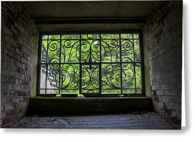 Looking Through Old Basement Window On To Vibrant Green Foliage Fine Art Photography Print  Greeting Card by Jerry Cowart