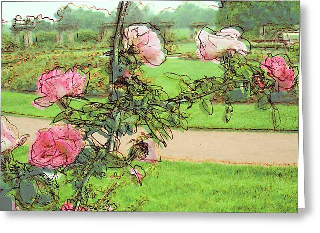 Looking Through The Rose Vine Greeting Card
