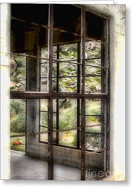 Looking Through The Window By Diana Sainz Greeting Card