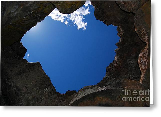 Greeting Card featuring the photograph Looking Up 2 by Debra Thompson