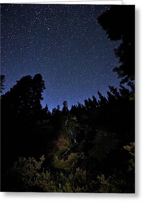 Looking Up And Out Greeting Card by Melany Sarafis