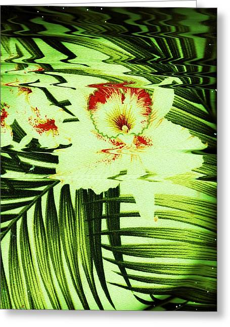 Looking Up View 2 Greeting Card by Anne-Elizabeth Whiteway