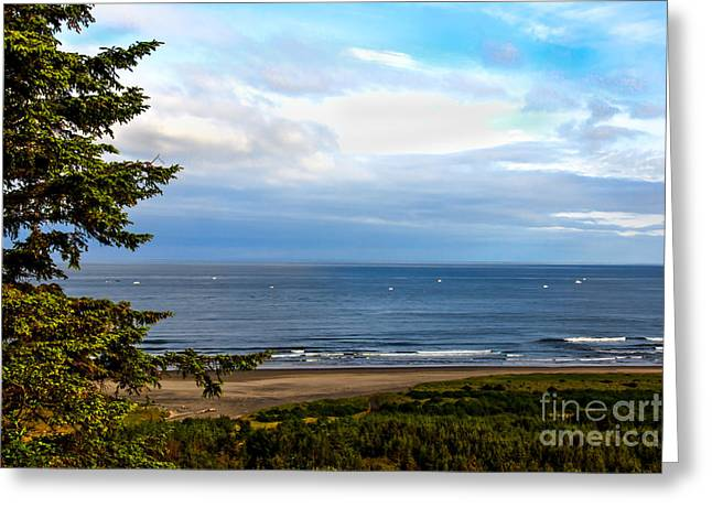 Looking West At The Fishing Boats Greeting Card