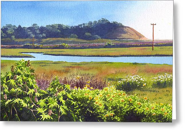Los Penasquitos Creek Torrey Pines Greeting Card by Mary Helmreich