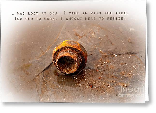 Greeting Card featuring the photograph Lost At Sea by Lena Wilhite