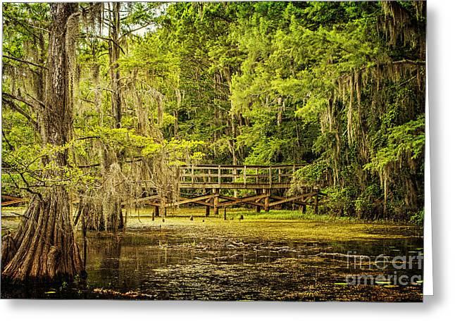 Lost Bridge On Caddo Lake Greeting Card by Tamyra Ayles