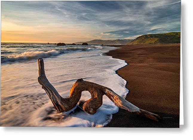 Lost Coast Driftwood Greeting Card by Leland D Howard