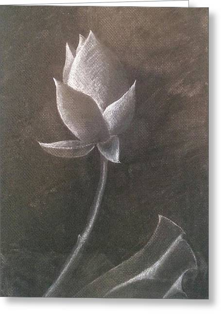 Lotus  Greeting Card by Amy Jago-Ford
