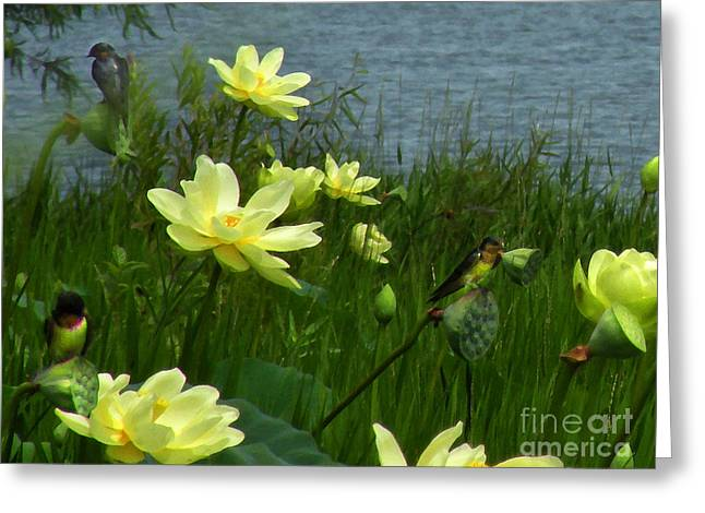 Greeting Card featuring the photograph Lotus And Swallows by Deborah Smith
