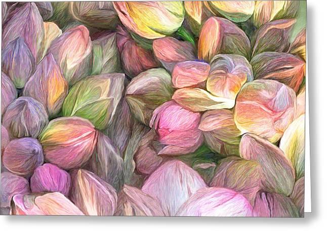 Lotus Bud Moods Greeting Card