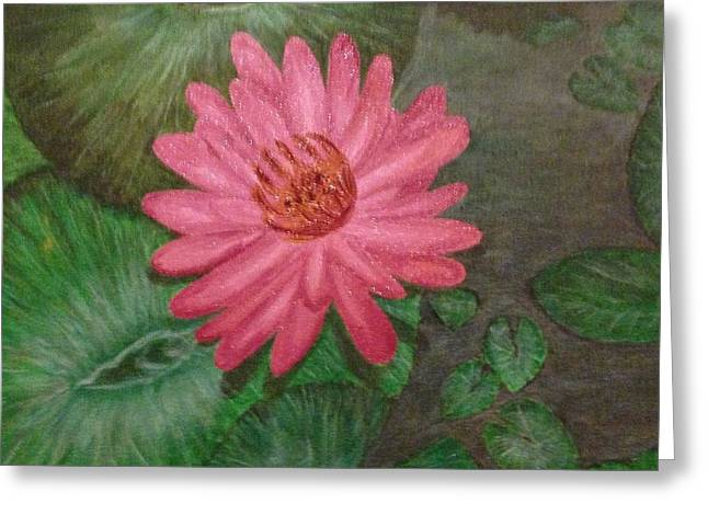 Water Lilly Greeting Card by S P