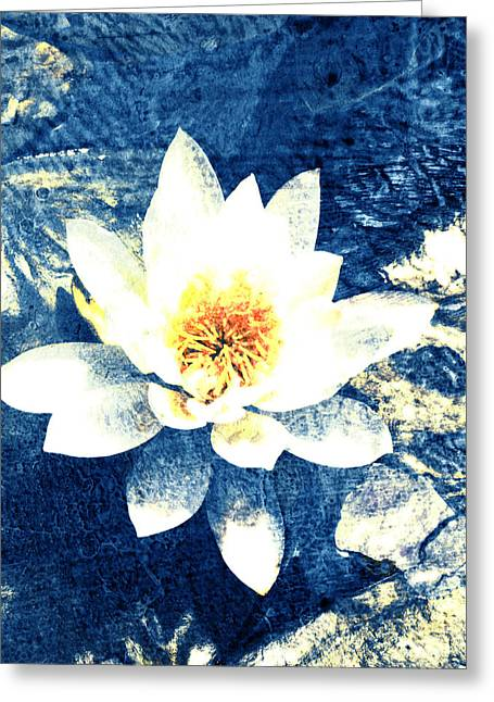 Lotus On Blue Greeting Card by Ann Powell