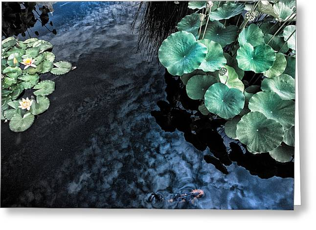 Lotus Pond Fantasia Greeting Card