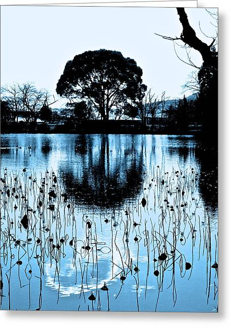 Lotus Pond Winter - 4 Greeting Card by Larry Knipfing