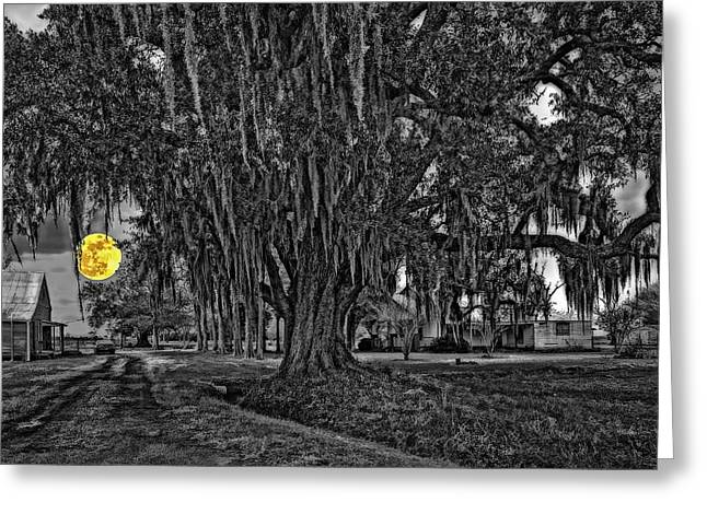 Louisiana Moon Rising Monochrome 2 Greeting Card by Steve Harrington
