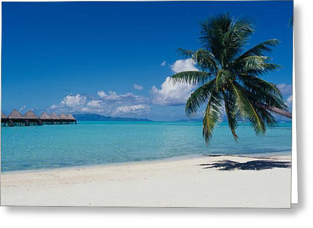 Lounge Chair Under A Beach Umbrella Greeting Card by Panoramic Images