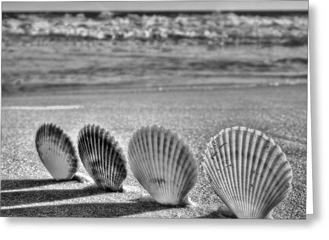 Lounging In Destin Bw Greeting Card by JC Findley