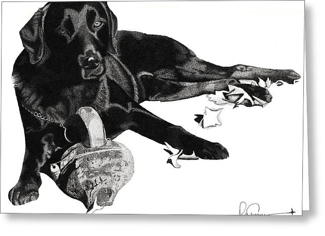 Lounging Lab Greeting Card by Rob Christensen