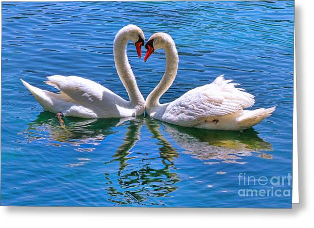 Love For Lauren On Lake Eola By Diana Sainz Greeting Card