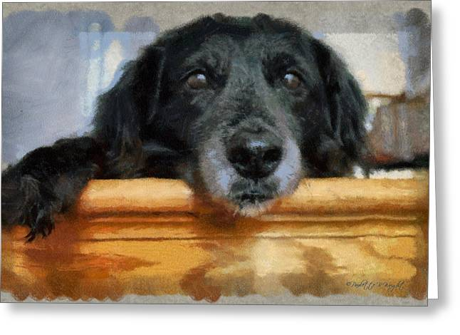 Love In A Puppy's Eyes Greeting Card by Paulette B Wright