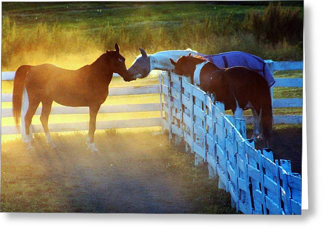 Love In Kentucky Greeting Card