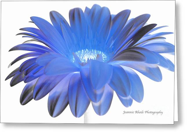 Greeting Card featuring the digital art Love Is A Gift by Jeannie Rhode