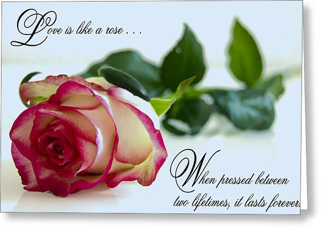 Love Is Like A Rose . . . Greeting Card
