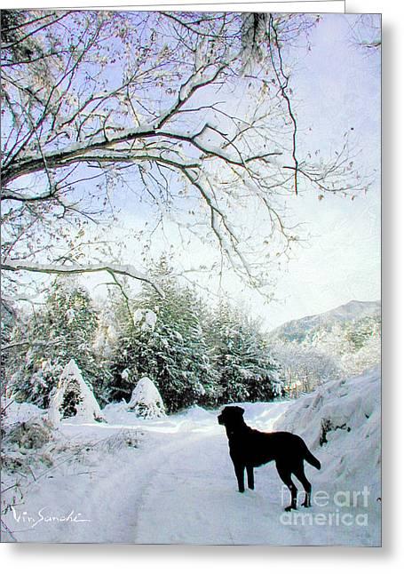Love Lab Snow 3 Greeting Card by Vin Kitayama