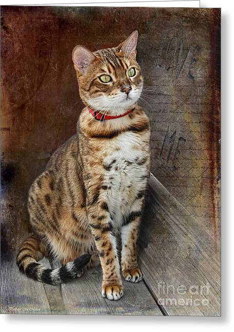 Love Me Asian Leopard Cat Greeting Card by Barbara McMahon