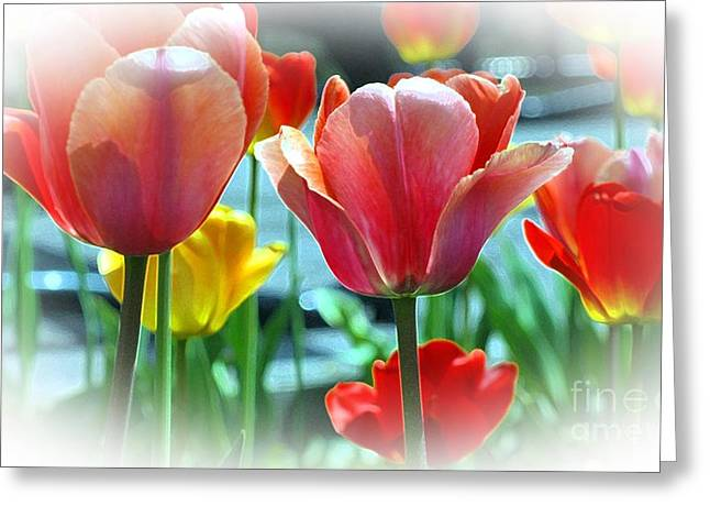 Love Of Tulips Greeting Card