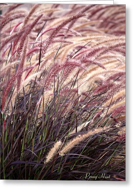 Love Purple Fountain Grass Greeting Card by Penny Hunt