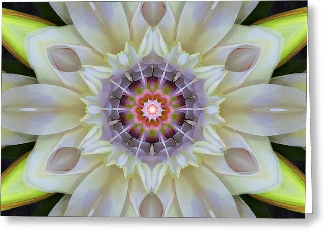 Love Star Flower Mandala Greeting Card