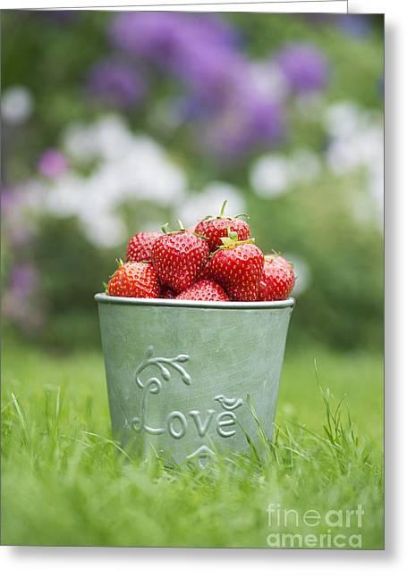 Love Strawberries Greeting Card