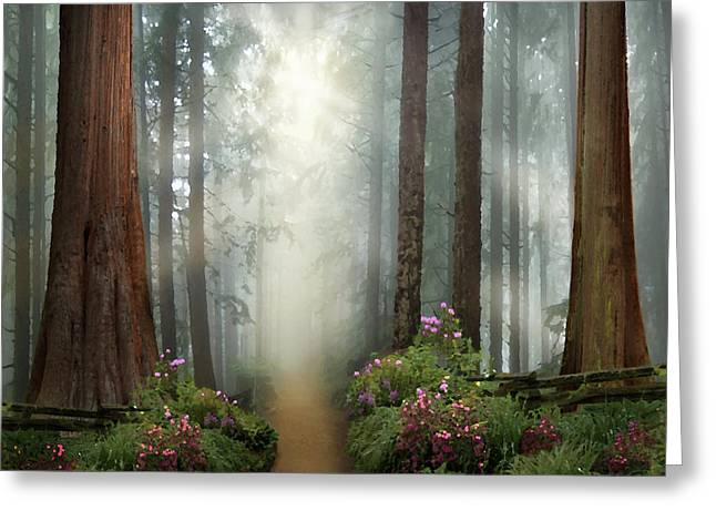 Love Walks With You Greeting Card by David M ( Maclean )