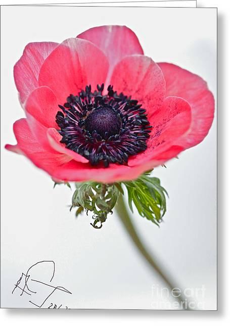 Love You... Greeting Card by  Andrzej Goszcz
