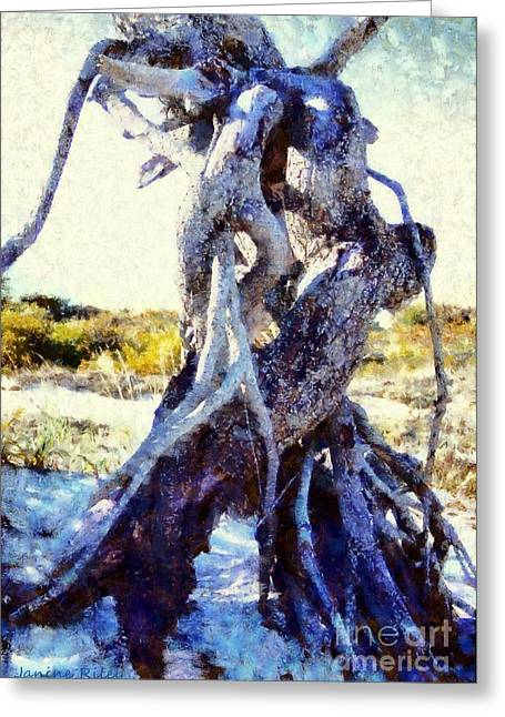 Lovers Entwined Beach Driftwood Greeting Card by Janine Riley
