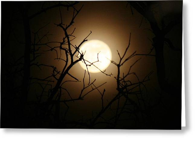 Lovers' Moon Greeting Card