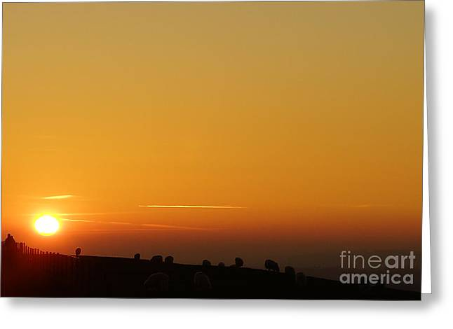 Lovers N Sunsets Greeting Card