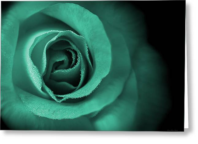 Love's Eternal Teal Green Rose Greeting Card by Jennie Marie Schell