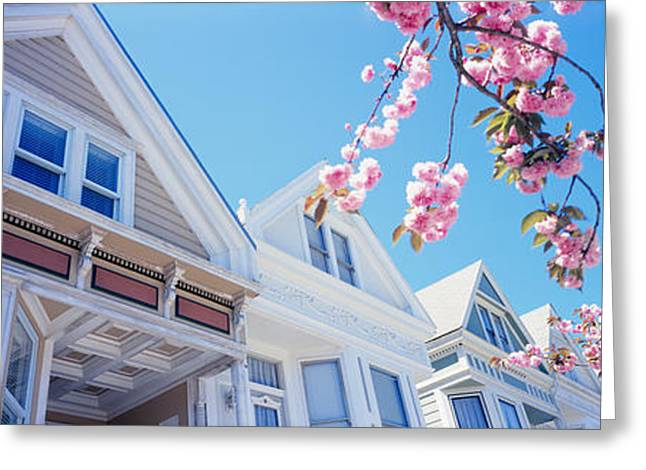 Low Angle View Of Cherry Blossom Greeting Card by Panoramic Images