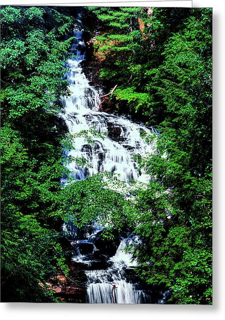 Low Angle View Of The Wolf Creek Falls Greeting Card